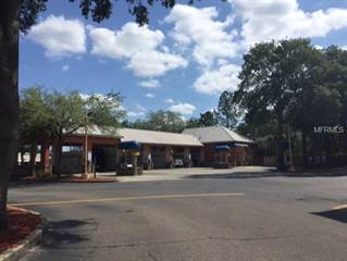 Comm/Ind for sale in 2451 E BEARSS AVENUE, Tampa, FL, 33613