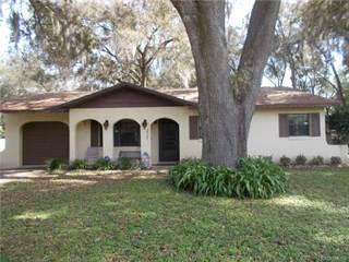 Single Family for sale in 2507 N Church Terrace, Hernando, FL, 34442