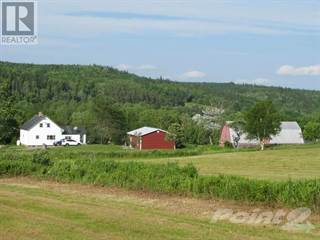 Farm And Agriculture for sale in 2929 East River West Side Road, Glencoe, Nova Scotia