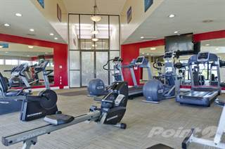Apartment for rent in Deercross Apartments - 1 Bed 1 Bath Loft Willow, Indianapolis, IN, 46254