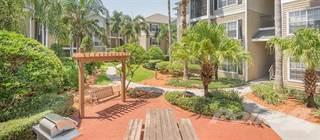 Apartment en renta en Post Hyde Park - Traditional 1x1 884 SF, Tampa, FL, 33606
