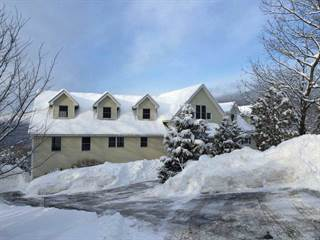 Single Family for sale in 61 Forest Ledge Road, Bartlett, NH, 03838