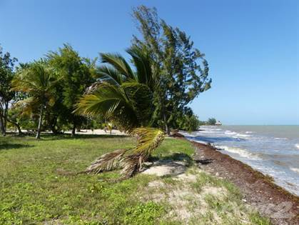 Other Real Estate for sale in 123' Carribean Seafront Lot, N Plantation,, Placencia, Stann Creek