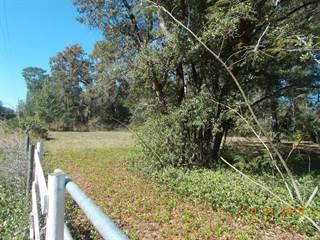 Land for sale in 7410 77 Lane, Trenton, FL, 32693