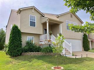 Single Family for sale in 2831 AU GRES RIVER Drive, Handy, MI, 48836