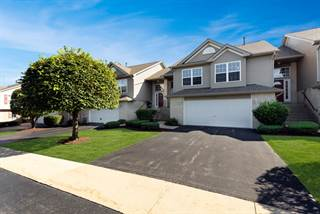 Condo for sale in 6835 Oak View Court, Oak Forest, IL, 60452