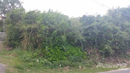 Lots And Land for sale in Carretera 2 km. 90.0 interior, Camuy, PR, 00627