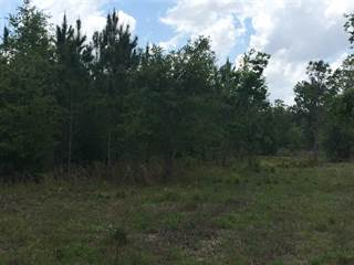 Farm And Agriculture for sale in 00 NE 44th Avenue, High Springs, FL, 32643