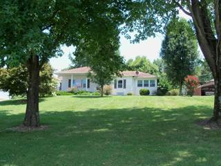 Single Family for sale in 7475 Us Hwy 51, Dongola, IL, 62926