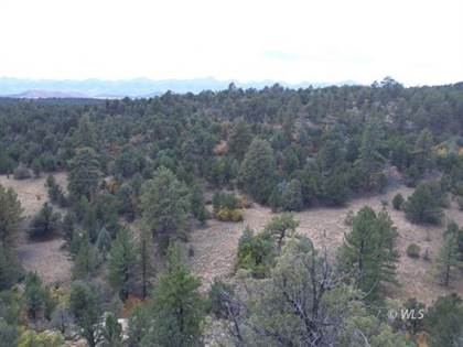 Lots And Land for sale in TBD K Path, Cotopaxi, CO, 81223