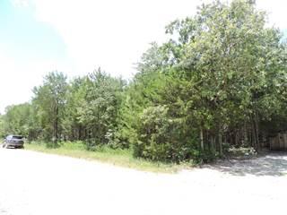 Land for sale in 000 Pine Street, Diamond City, AR, 72644