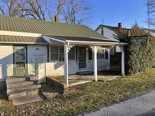 Single Family for sale in 128 Harrison Street, Golconda, IL, 62938