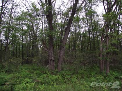 Residential Property for sale in 0 Swihart Rd Manistee County, Brethren, MI, 49619