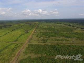 Farm And Agriculture for sale in #2145 - A 1,042 ACRE RIVER FRONT FARM LOCATED IN THE BELIZE DISTRICT., Rancho Dolores, Belize