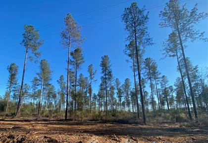 Lots And Land for sale in 0 Spread Oak Road, Keysville, GA, 30816