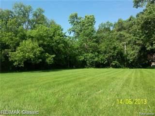 Land for sale in 3000 ELIZABETH Street, Wayne, MI, 48184
