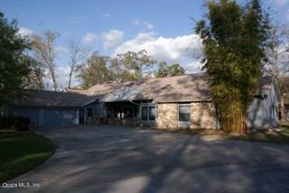 Farm And Agriculture for sale in 8585 NW 118th Terrace, Ocala, FL, 34482