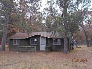 Single Family for sale in 15685 Pine Oak Road, Hillman, MI, 49746