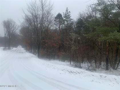 Lots And Land for sale in 9126 160th Avenue, Stanwood, MI, 49346