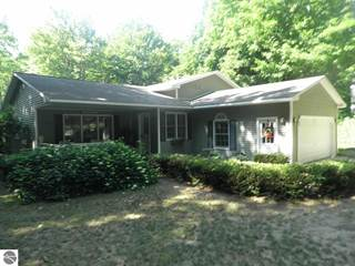 Single Family for sale in 8375 Bent Pine Drive, Lake Ann, MI, 49650