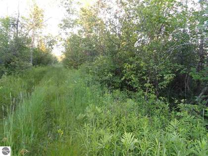 Lots And Land for sale in On Rabourn Road, Kalkaska, MI, 49646
