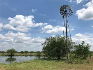 Farm And Agriculture for sale in 0000 Corrigan Road, Skidmore, TX, 78389