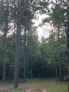 Lots And Land for sale in 59.20 Ac. FS Road 1450, Clarksville, AR, 72830