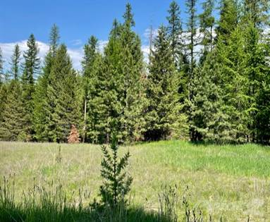Lots And Land for sale in 73 Sugarloaf Lane, Libby, MT, 59923