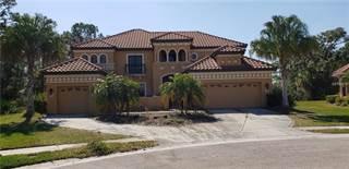 Single Family for sale in 20001 PERGOLA BEND LANE, Tampa, FL, 33647