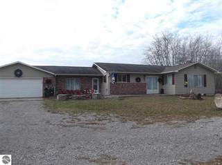 Single Family for sale in 8773 Rose City Road, Hale, MI, 48739