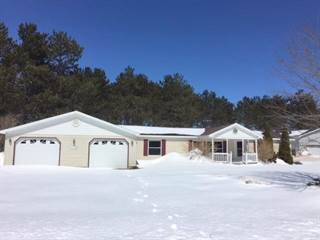 Single Family for sale in 1174 Shadow Lane, Gaylord, MI, 49735