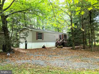 Residential Property for sale in 340 BOTTOM ROAD, Blain, PA, 17071