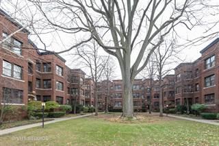 Condo for sale in 1133 Maple Avenue 1E, Evanston, IL, 60202