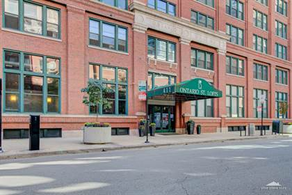 Residential Property for sale in 411 West ONTARIO Street 325, Chicago, IL, 60654
