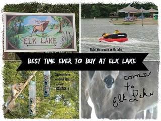 Land for sale in 445 Elk Lake Resort, LOTs 1117-1118 Road, Owenton, KY, 40359