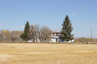 Farm And Agriculture for sale in 157138 Road 98N RD, Birtle, Manitoba, R0M0C0
