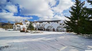 Townhouse for sale in 274 Brooksburgh Rd #35, Greater Windham, NY, 12439