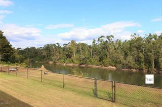 Single Family for sale in 1369 E River Road, Wewahitchka, FL, 32465