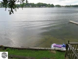 Single Family for sale in 385 N Sage Lake Road, Hale, MI, 48739