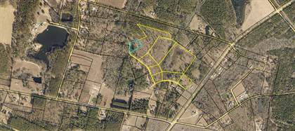 Lots And Land for sale in 31.97 Ac Larue Lane, Collins, GA, 30421