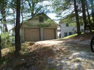 Single Family for sale in 53 Lucerne Strasse, Little Switzerland, NC, 28777