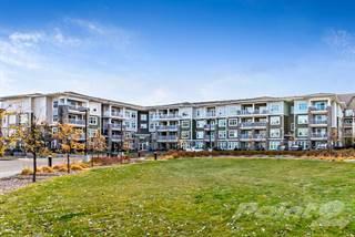 Apartment for sale in 11 MAHOGANY RO SE, Calgary, Alberta, T3M 2L6