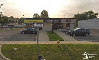 Comm/Ind for sale in 18615 Fort, Riverview, MI, 48193