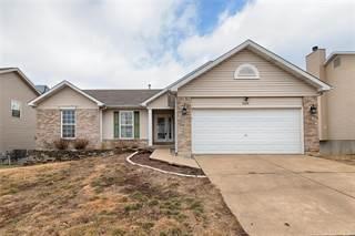 Single Family for sale in 2668 Ruddy Ridge, High Ridge, MO, 63049