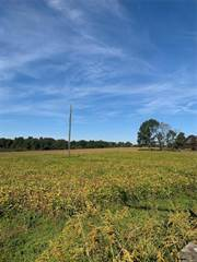 Land for sale in 1 BCR 316, Marble Hill, MO, 63764