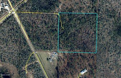 Lots And Land for sale in 26233 NW WALTER POTTS RD Road, Altha, FL, 32421