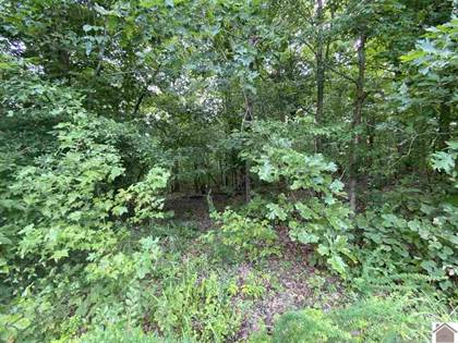 Lots And Land for sale in 000 Dow Road, Eddyville, KY, 42038