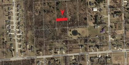 Lots And Land for sale in 0 GEORGIA Avenue, Port Huron, MI, 48060