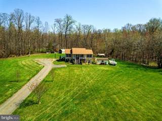 Farm And Agriculture for sale in 14731 DOUBLE H ACRES LANE, Culpeper, VA, 22701