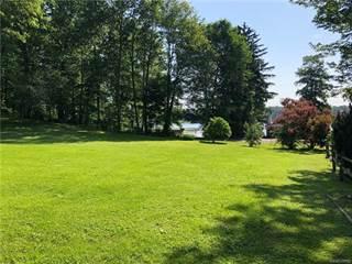Land for sale in 2075 Webster Park Drive, Genoa, MI, 48843